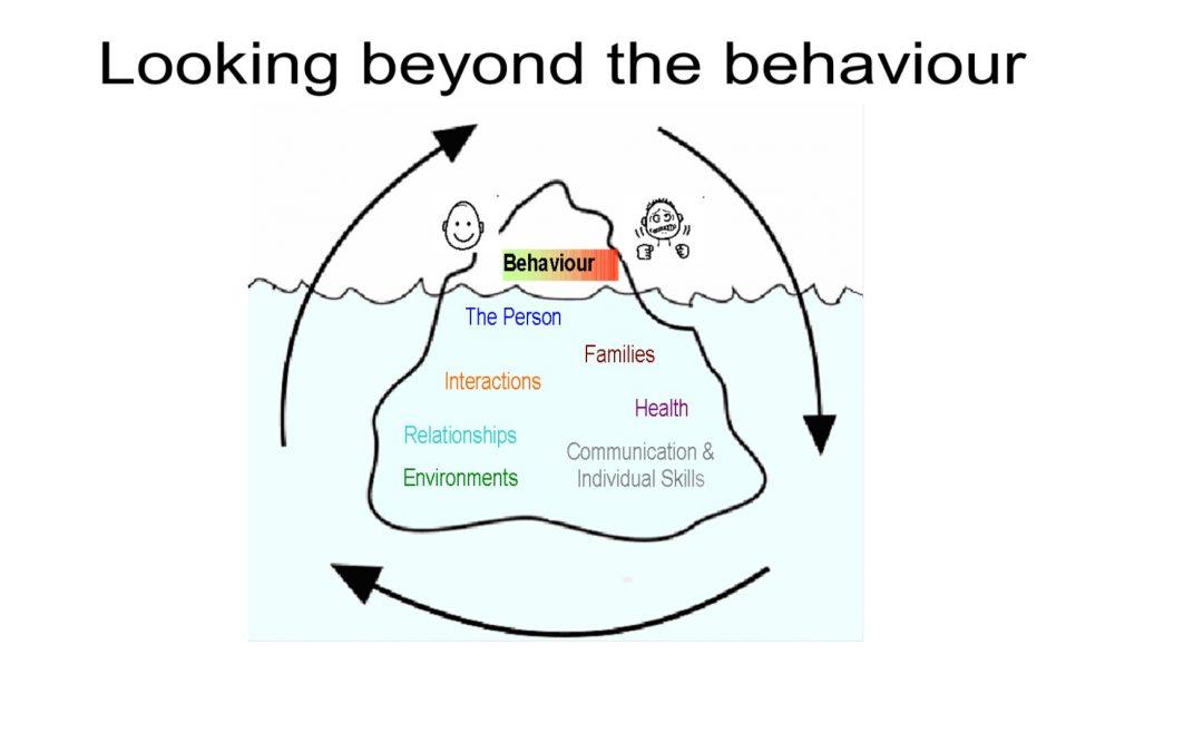 Looking beyond the behaviour