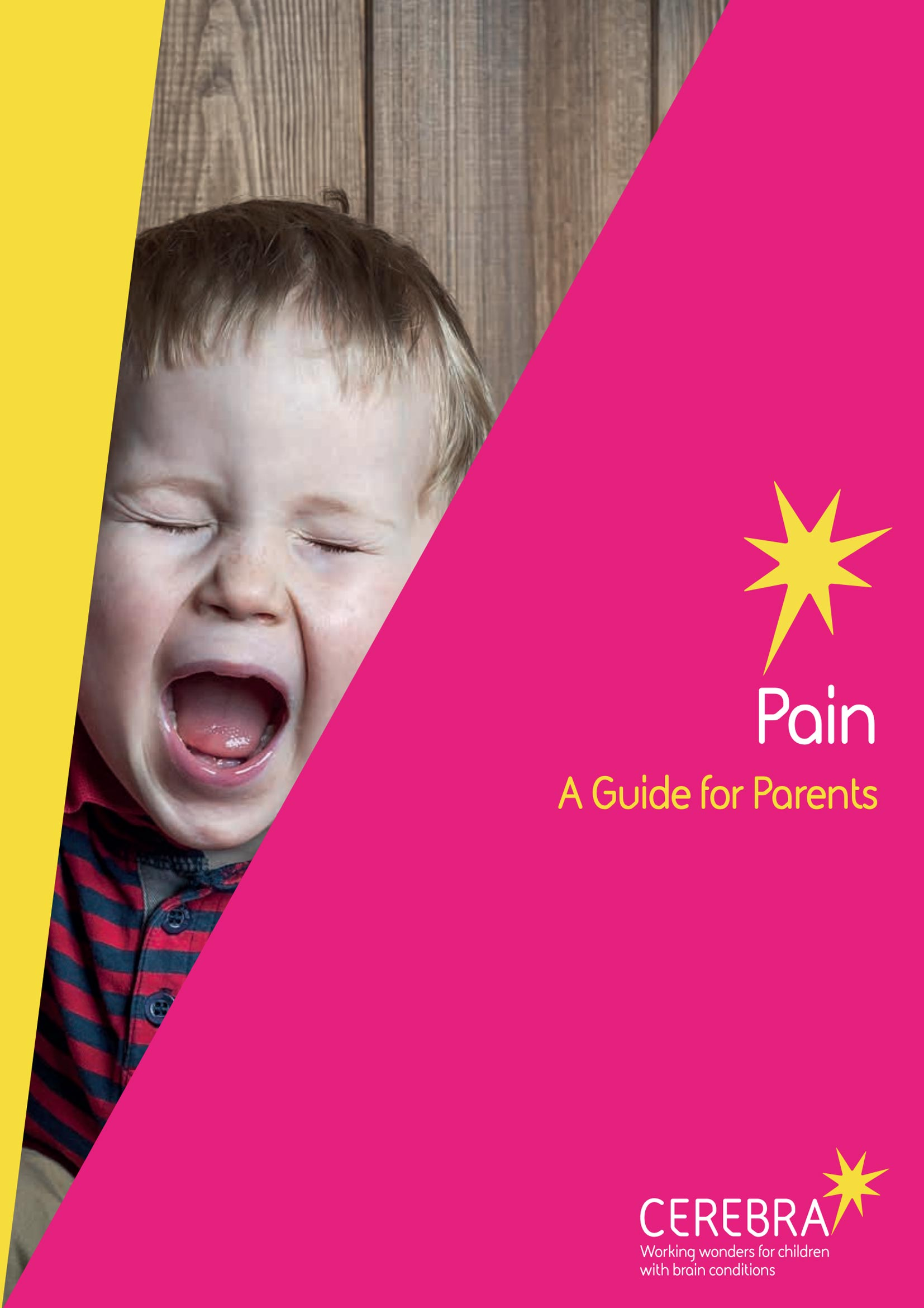 Pain - A Guide for Parents cover