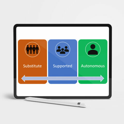 diagram of supported decision making across a spectrum